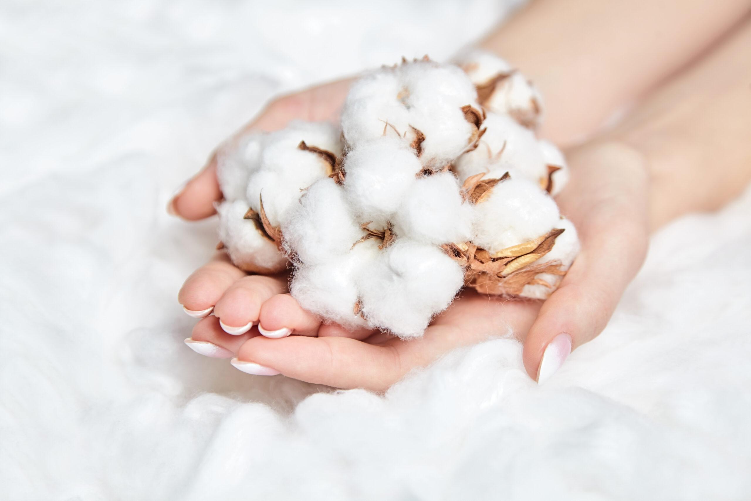 海外の綿花日本製ではなくても、日本製と同等の製品が作れます